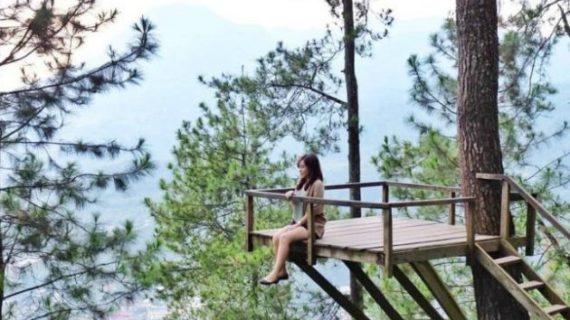 Wisata omah kayu paralayang sambil menikmati keindahan gunung banyak
